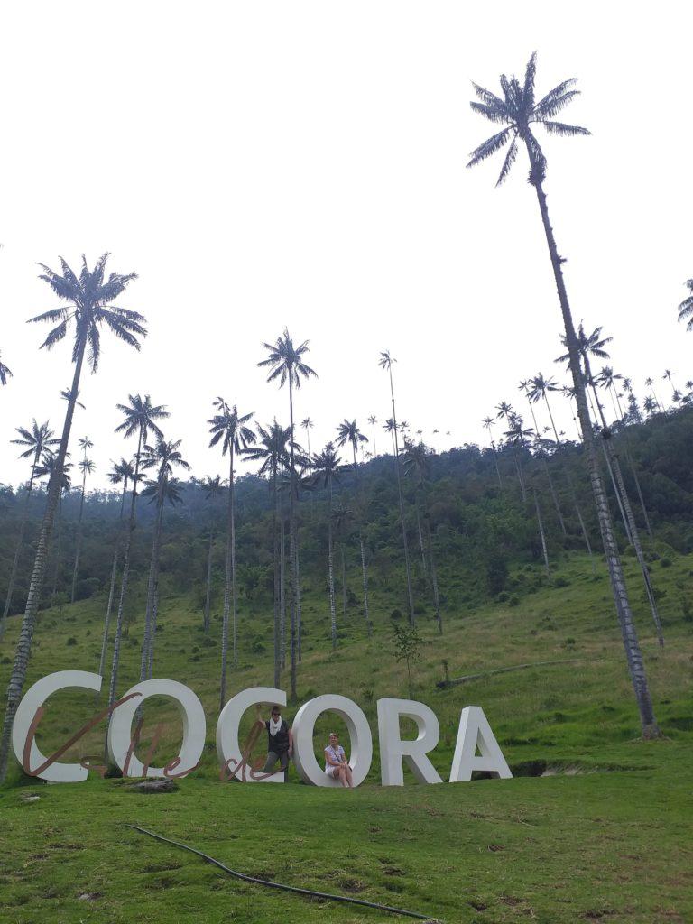 cocora valley colombie